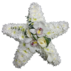 Mini Orchid Star